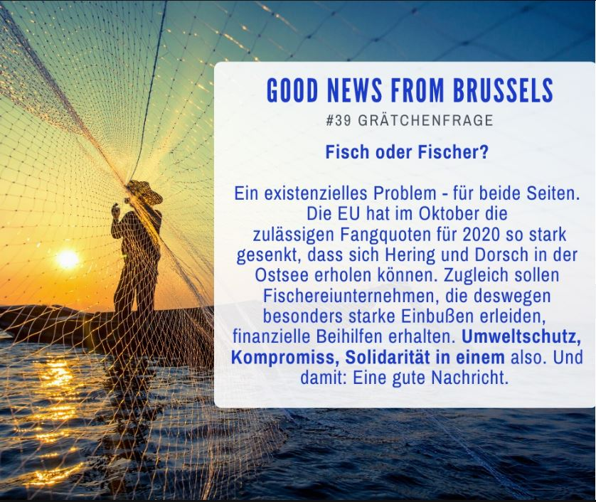 Good News from Brussels #39